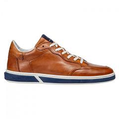 Floris van Bommel Herenschoenen Sneakers bruin
