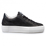 Floris van Bommel Damesschoenen Sneakers zwart